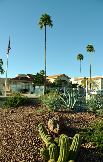 Welcome to Greenway Palms!